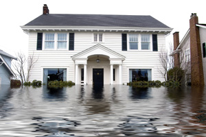 Pro Restoration, Inc. offers disaster restoration and storm damage recovery in California